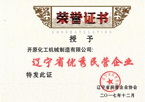 优秀民营企业证书